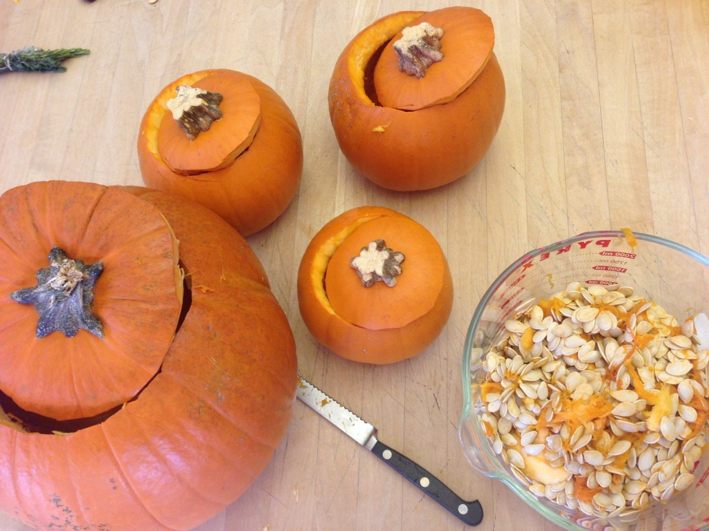 eating roasted pumpkin seeds